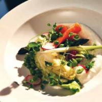 Salat med sommerkål
