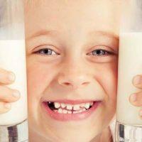 Kold mælk smager godt til madpakken